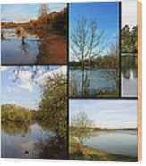 Country Parks Collage Wood Print