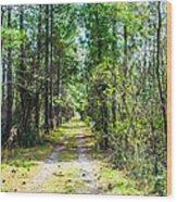 Country Path Wood Print
