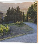 Country Road At Sunset Wood Print