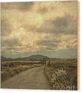 Country Road With Wildflowers Wood Print