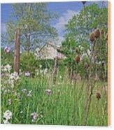 Country Side Wood Print