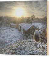Country Snow And Sunrise Wood Print by Yhun Suarez