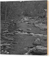 Country Stream Bw Wood Print