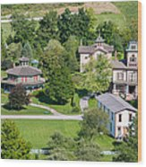 Country Village Wood Print