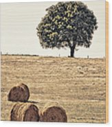 Countryside In Summer Wood Print