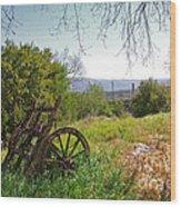 Countryside Wagon Wood Print