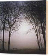 County Wicklow, Ireland Wood Print