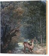 Courbet: Hunted Deer, 1866 Wood Print