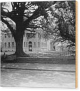 Courthouse And Town Square- Woodville Mississippi Wood Print
