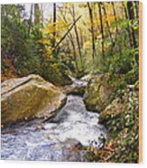 Courthouse River In The Fall 2 Wood Print
