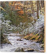 Courthouse River In The Fall Wood Print
