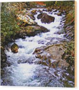 Courthouse River In The Fall Filtered Wood Print
