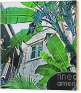Courtyard Feelings Cafe Nola Wood Print