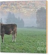 Cow On The Foggy Field Wood Print