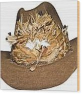 Cowboy Hat With Feathers Wood Print