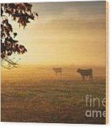 Cows In A Foggy Field Wood Print