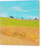 Cows On A Hill . 40d3430 . Painterly . Long Cut Wood Print by Wingsdomain Art and Photography