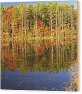 Coxsackie Reflection Wood Print
