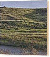 Coyote Hills Regional Park Wood Print