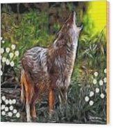 Coyote Howl Wood Print