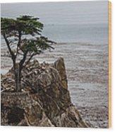 Cpress Wood Print