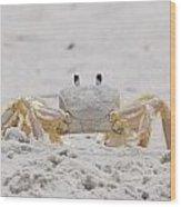 Crabby Eyes Wood Print