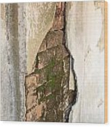 Crack In The Wall Wood Print