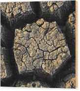 Cracked, Dried Out Mud, Mokolodi Nature Wood Print