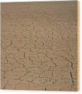 Cracked Mud Bed Of Aral Sea Wood Print