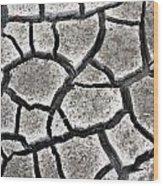Cracked Mud Wood Print