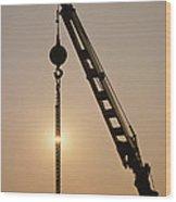 Crane At Rest Wood Print