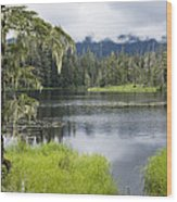 Crane Lake, Tongass National Forest Wood Print