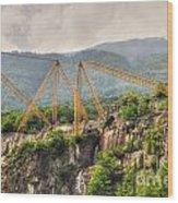 Crane On The Mountain Wood Print
