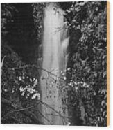 Cranny Falls Waterfall Carnlough County Antrim Northern Ireland Uk Wood Print