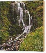 Crater Lake Falls Wood Print