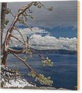 Crater Lake Pine Wood Print