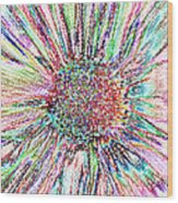 Crazy Daisy Colored Pencil Photoart Wood Print