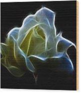 Cream Rose Wood Print