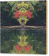 Creation 112 Wood Print