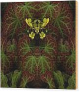 Creation 152 Wood Print