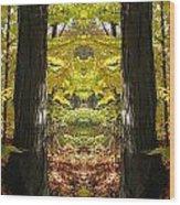 Creation 40 Wood Print