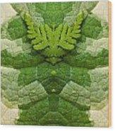 Creation 91 Wood Print