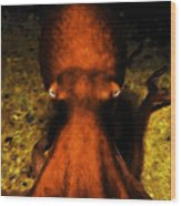 Creatures Of The Deep - The Octopus - V4 - Orange Wood Print