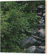 Creek Flow Panel 1 Wood Print