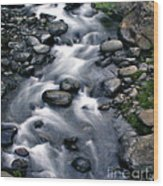 Creek Flow Panel 3 Wood Print