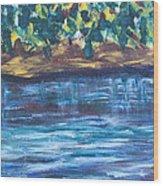 Creek In Sarasota Wood Print