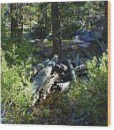 Creek In White Wolf Wood Print