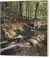 Creek In Woods, Cloughleagh, County Wood Print