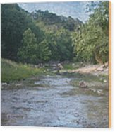 Creek Near Camp Verde  9107 Wood Print