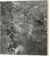 Creekside Wood Print